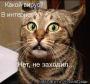 Влад Ко.....