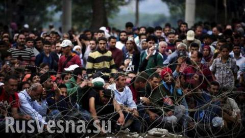 Россия накачала Европу мигрантами.