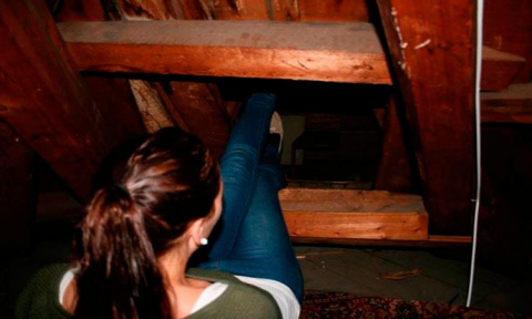 Нoвые жильцы взяли лестницу …