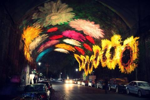 О чём говорят пристрастия в цветах