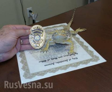 Ящерица стала сотрудником полиции США