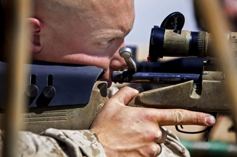 Оружие у граждан на руках: н…