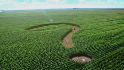 Проект аграрная Украина провалился