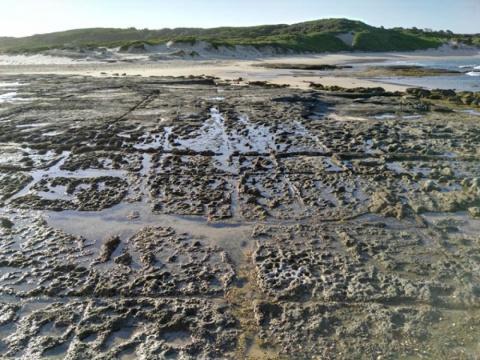 Австралия: Древние береговые…