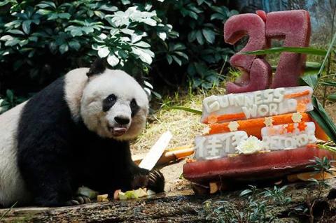 В Китае умерла старейшая пан…