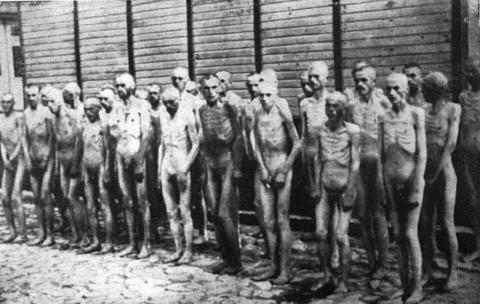 Пить баварское: План «Голод»