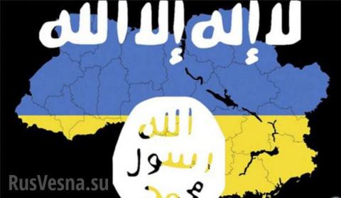 Украина стала центром легализации боевиков ИГИЛ — подробности