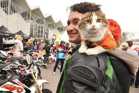Поразившая участников «Мотовесны» кошка-байкерша оказалась «дочерью полка»