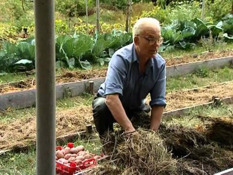 Умный огород: участок не знает лопаты уже 20 лет