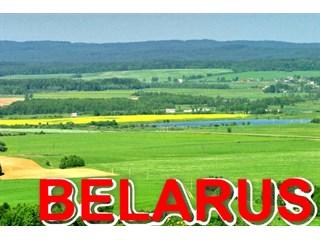 Белоруссия доигралась: необандеровцы стали открыто угрожать