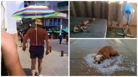 Несколько способов охладиться в жару