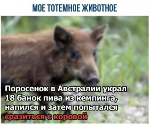 Фотомемы, для настроение)