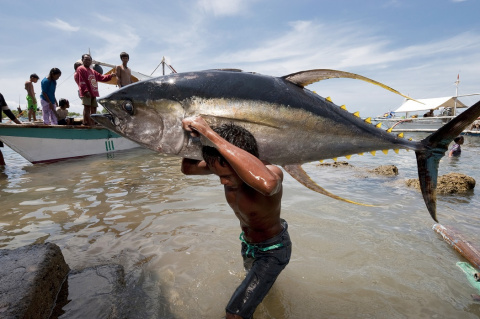 Невероятная рыбалка! Рыба сама насаживается на крючок!