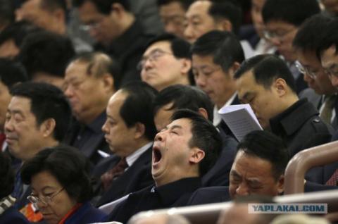 Китайскую систему для чиновников - в России