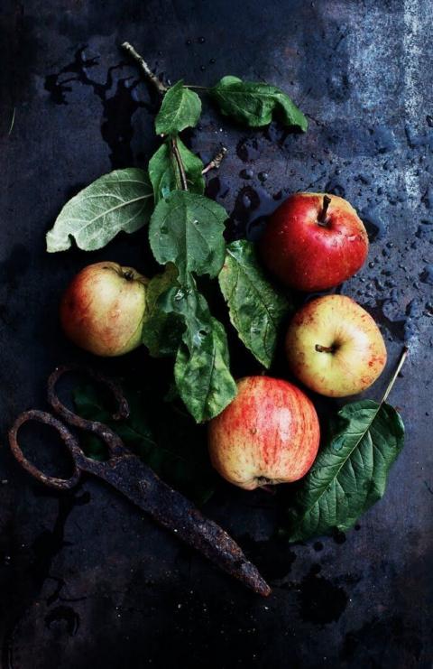Сохраняем урожай яблок —рец…