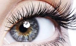 Разработан новый способ лечения слепоты