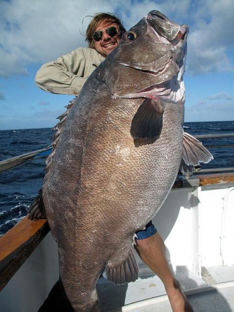 Вот такая рыбалочка у майоров вышла