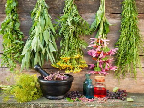 Целебный сад для себя любимого