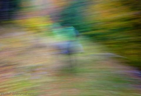 Разноцветная осень в горах О…