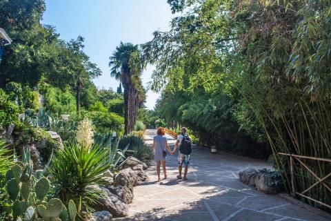 Никитский сад. Осенние зарисовки