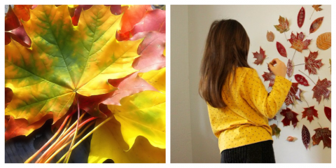 Она собрала листья в парке и приклеила их на стену в гостиной. хочу и себе такое!