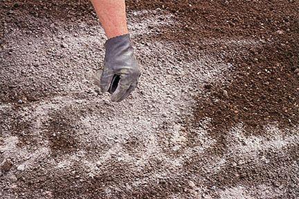 Уменьшаем кислотность почвы
