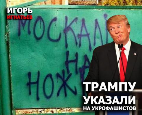 Трампу указали на укрофашистов
