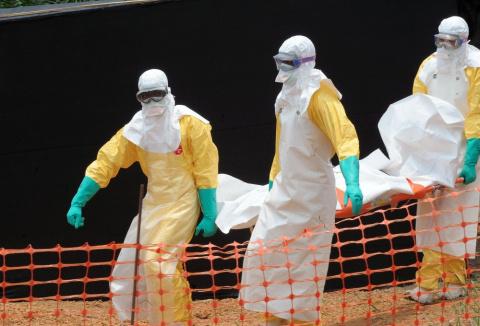 ВОЗ: Эбола несет угрозу всему миру
