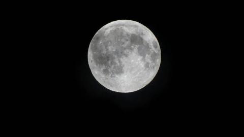 Астроном разглядел возле Лун…