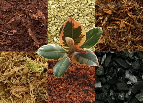 Улучшители почвы: виды и способы применения
