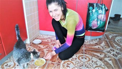 Смешные кошки коты и собаки …