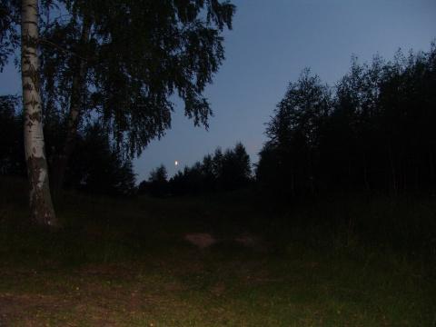 Царица - ночь