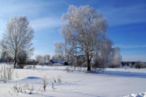 Зимнее