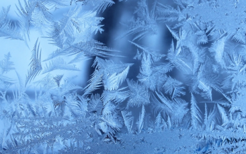 Морозная красота: ледяное искусство природы