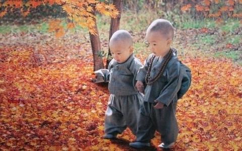 Основные правила тибетского …