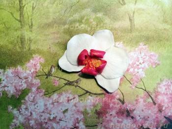 Цветы из полимерной глины на…
