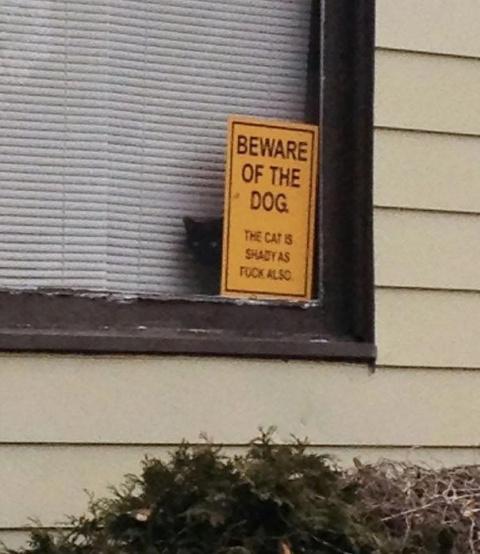 Осторожно, злая собака!)))