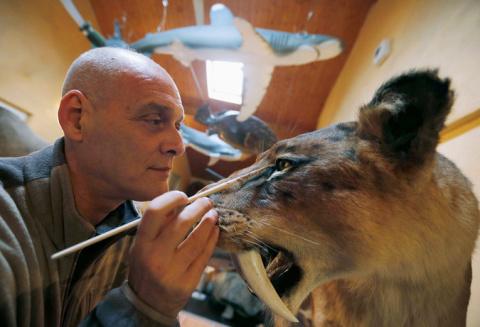 Бельгийский скульптор оживляет животных