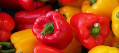 Простые секреты выращивания перца