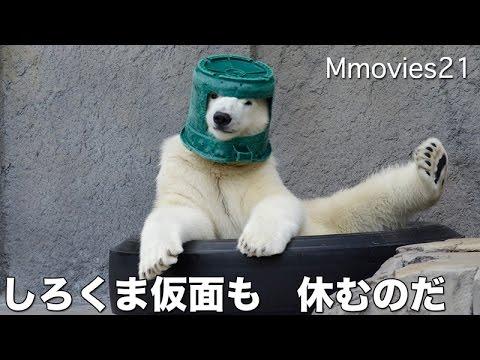 Медвежонок, который носит ст…