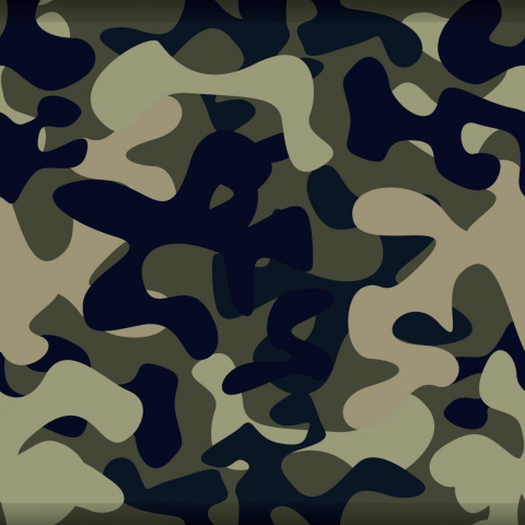 «Явам так скажу: армия— это полнейший абсурд!»