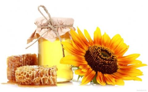 Полезные свойства меда при з…