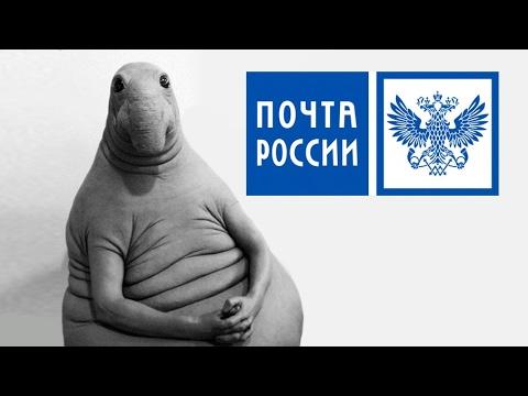 Не дошли: Житель Петербурга …