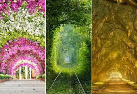 Природные тоннели: обзор сам…