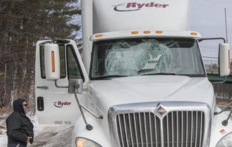 Индейка влетела в лобовое стекло грузовика
