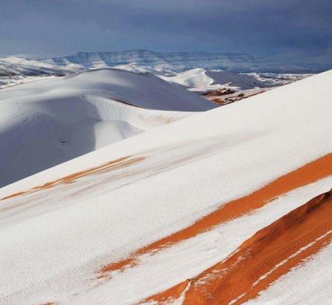 В пустыне Сахаре выпал снег (фото)