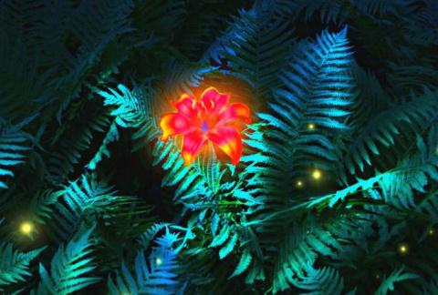 Ночь на Ивана Купалу: старинные обряды для благополучия на весь год!