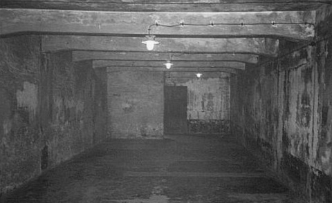 Жуткие факты истории: камеры смерти