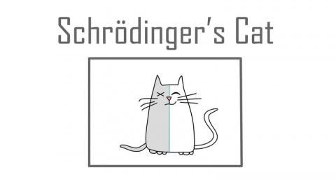 Кот Шрёдингера: мысленный эксперимент квантовой механики
