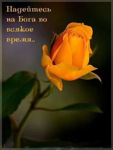 Вера Якунина